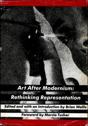 Art after modernism rethinking representation