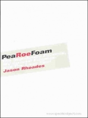 PeaRoeFoam : The Impetuous Process, My Special Purpose and The Liver Pool